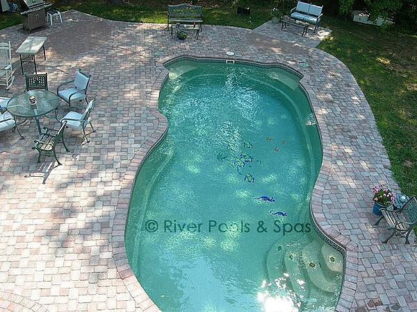 fiberglass pool with paver coping