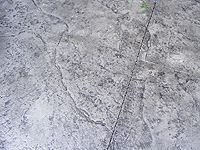 Jumbo Stone Stamp Light Grey With Dark Grey Accent