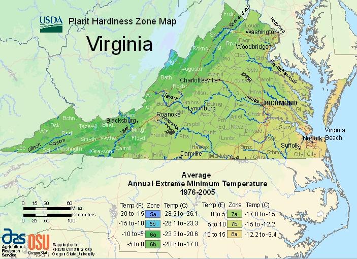 USDA map of Virginia's plant hardiness zones