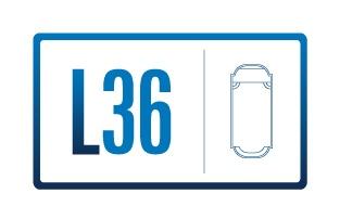 L36 identity