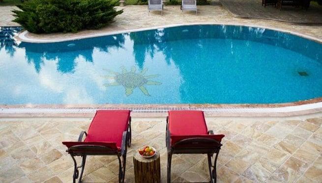 freeform concrete pool design
