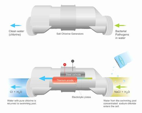 how a salt cell works