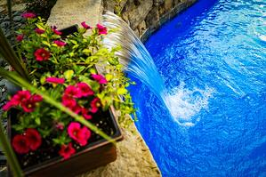 potted flowers on a poolside wall with a cascade