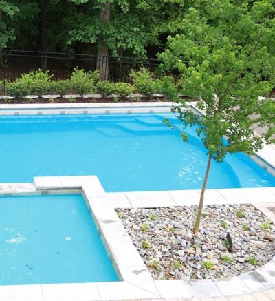 poolside-tree