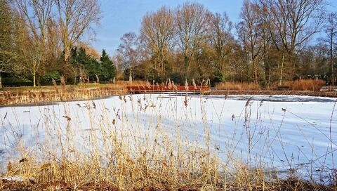 can-you-build-a-pool-in-the-winter