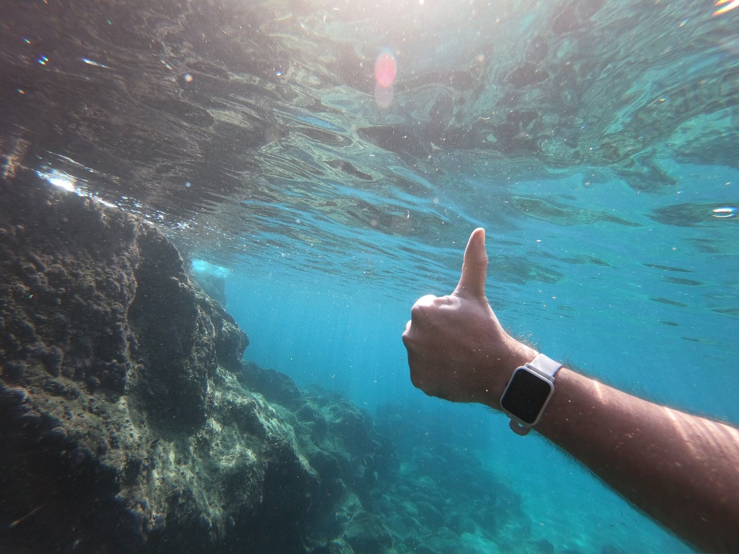 What are the Best Swimming Apps and Pool Fitness Trackers for 2021?